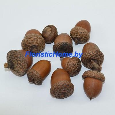 ПЛОДЫ Желуди 10 шт., , L 1-3 см, натуральный