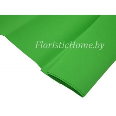 ФОАМИРАН Иранский (№ 015/171) 0,8 - 1мм, L 60 см х h 70 см., зеленый