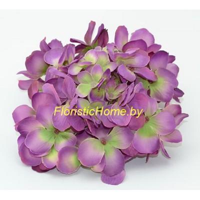 ГОЛОВКИ ЦВЕТОВ Гортензия, d 19 см х h 9 см, фиолетовый-салатовый