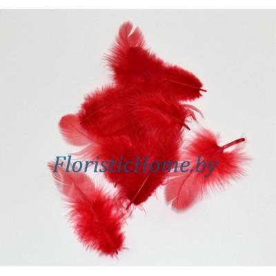 Перья пушистые в пакете 20 шт, L 3-13 см, , красный