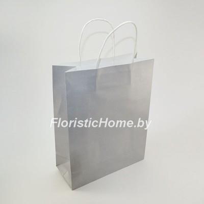 КРАФТ-ПАКЕТ Цветной с кручеными ручками, 21 см х 27 см х 11 см, серебро