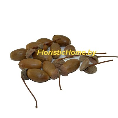 ПЛОДЫ Желуди удлиненные 10 шт., , L 1-3 см, натуральный