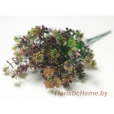 ВЕТКА Очиток мелкий, Пластик, L 32 см, зеленый-светло-фиолетовый