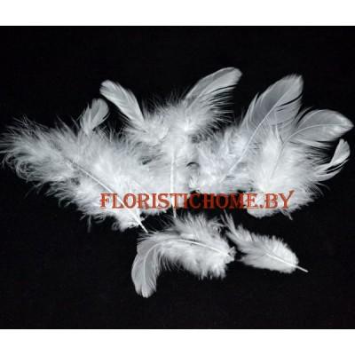 Перья пушистые в пакете 20 шт, L 3-13 см, , белый