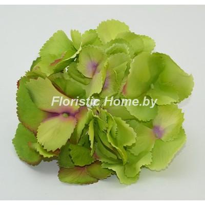 ГОЛОВКИ ЦВЕТОВ Гортензия резная , d 17 см х h 10 см, темно-салатовый