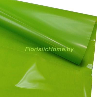 ПЛЕНКА в рулоне двухсторонняя матовая/глянцевая, h 70 см х 10 м, салатовый