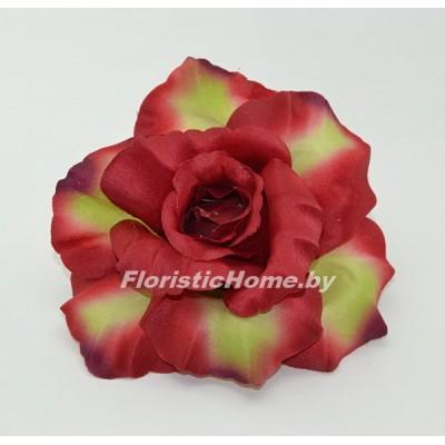 ГОЛОВКИ ЦВЕТОВ Роза раскрытая, d 11 см, темно-красный-салатовый