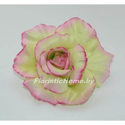 ГОЛОВКИ ЦВЕТОВ Роза раскрытая, d 11 см, нежно-фисташковый-розовый