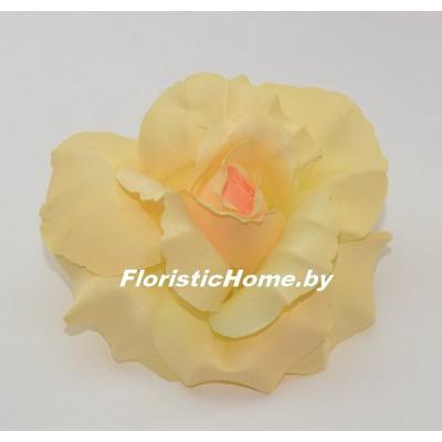 ГОЛОВКИ ЦВЕТОВ Роза раскрытая, d 11 см, бледно-абрикосовый