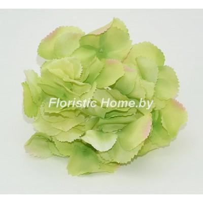 ГОЛОВКИ ЦВЕТОВ Гортензия резная , d 17 см х h 10 см, салатовый