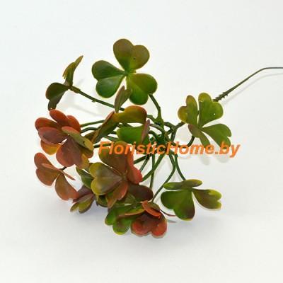 ВЕТКА Клевера, Пластик, L 24 см, зеленый-коричневый