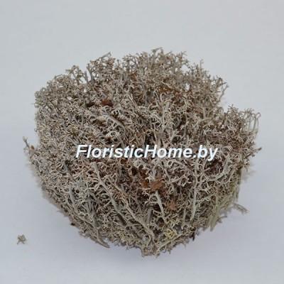 МОХ сухой , дизайн №4, 7-10 гр., серый
