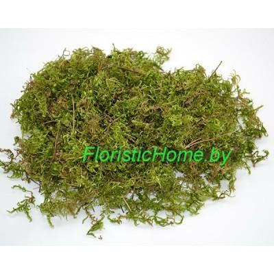 МОХ сухой, 10 -12 гр., светло-зеленый