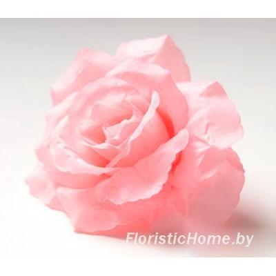 ГОЛОВКИ ЦВЕТОВ Роза раскрытая, d 12 см, светло-розовый - ярко-коралловый